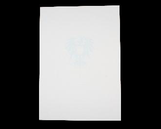 Zeugnis-Unterdruckpapier 1-seitig 110 g