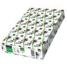 PRO DESIGN Kopierpapier A3 100g 500 Blatt
