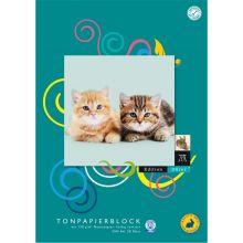 DÜRER HASE Tonpapierblock A4 130 g/m² 20 Blatt farbig sortiert