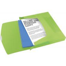 ESSELTE Ablagebox 6240 Vivida A4 PP grün