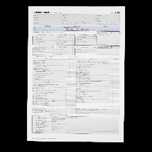 Prüfungsprotokoll für die Fahrprüfung Klasse C95 gemäß FSG § 11 Abs. 7