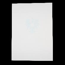 Zeugnis-Unterdruckpapier 2-seitig 110 g